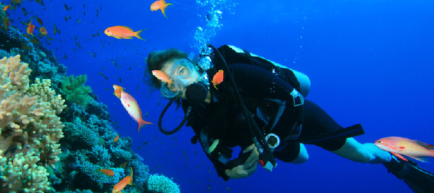 Plonger dans les Cinque Terre